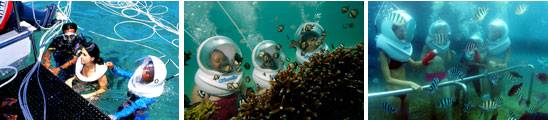 Bali, Sea Walker, Diving, Adventures